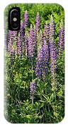 Purple Lupines In Summer IPhone Case