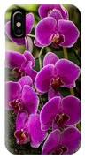 Purple Orchid IPhone Case