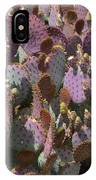 Purple Prickly Pear 2 IPhone Case
