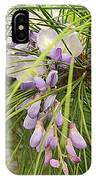 Pushing Though Or Wisteria And Long Needle Pine IPhone Case
