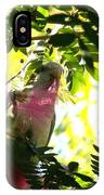 Quaker Parrot With Mimosa Flower IPhone Case
