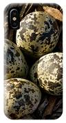 Quartet Of Killdeer Eggs By Jean Noren IPhone Case