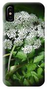 Queen Ann Lace IPhone Case