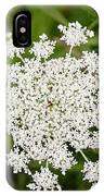 Queen Anne's Lace No 2 IPhone Case