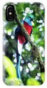 Quetzal In Monteverde IPhone Case
