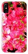Quince IPhone Case