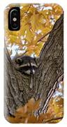 Raccoon Nape IPhone Case