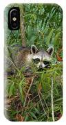 Raccoon Napping On Log IPhone Case