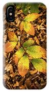 Radiant Beech Leaf Branches IPhone Case