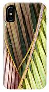 Rainbow Of Palms Gp IPhone Case
