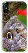 Rainforest Butterfly IPhone Case