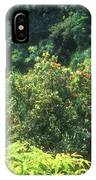 Rainforest Near Hana IPhone X / XS Case