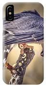 Raptor 21 IPhone Case