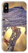 Raptor 22 IPhone Case