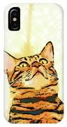 Ravi Series #1 IPhone Case