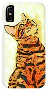 Ravi Series #7 IPhone Case