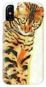 Ravi Series #3 IPhone Case