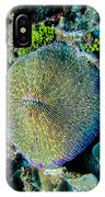 Razor Coral At Pakin Atoll IPhone Case