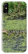 Real Florida IPhone Case