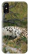 Reclining Cheetah 2 IPhone Case