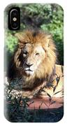 Reclining King IPhone Case