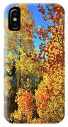 Red And Golden Aspens In Dillon Co IPhone Case