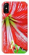 Red And White Beauty IPhone Case