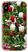 Red And White Tulips With Red And Pink English Daisies In Spring IPhone Case