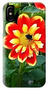 Red And Yellow Flower With Bee IPhone Case