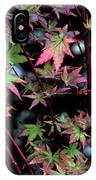 Red Bark Maple  IPhone Case