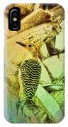 Red Bellied Dream IPhone Case