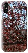 Red Berries In Tree IPhone Case