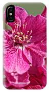 Red Bud Bloosom IPhone Case