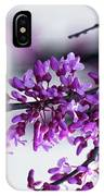 Red Bud Branch IPhone Case