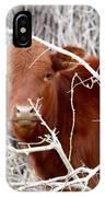 Red Calf  Hideaway IPhone Case