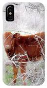 Red Calf In Winter Brush IPhone Case