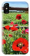 Red Corn Poppies At The Fence IPhone Case