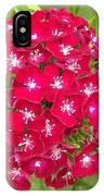 Red Dianthus IPhone Case