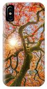 Red Dragon Japanese Maple In Autumn Colors IPhone Case