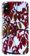 Red Fall Colors IPhone Case