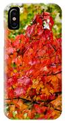 Red Fall Leaves IPhone X Case