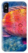 Red Fish Blue Fish IPhone Case