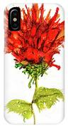 Red Flower 2 IPhone Case