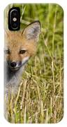 Red Fox Pictures 19 IPhone Case