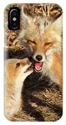 Red Fox Vixen With Pup On Hecla Island In Manitoba IPhone Case