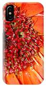 Red Gerbera Daisy IPhone Case