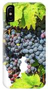 Red Grapes Seasonal Background IPhone Case