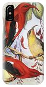 Red Hawaiian Honeycreeper IPhone Case