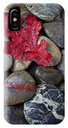 Red Leaf Wet Stones IPhone Case by Garry Gay