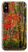 Red Leaves Of Autumn IPhone Case